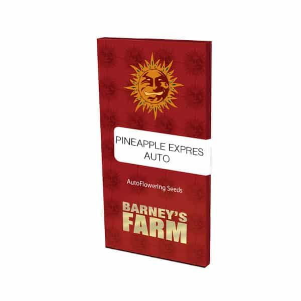 Pineapple Express Auto