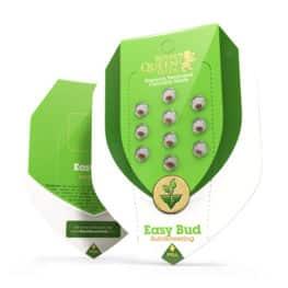 Easy Bud Autoflowering Cannabis Seeds