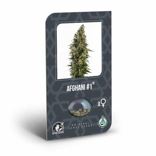 Afghani #1 Automatic Cannabis Seeds
