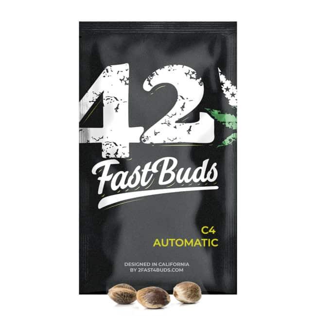 C4 Automatic Cannabis Seeds