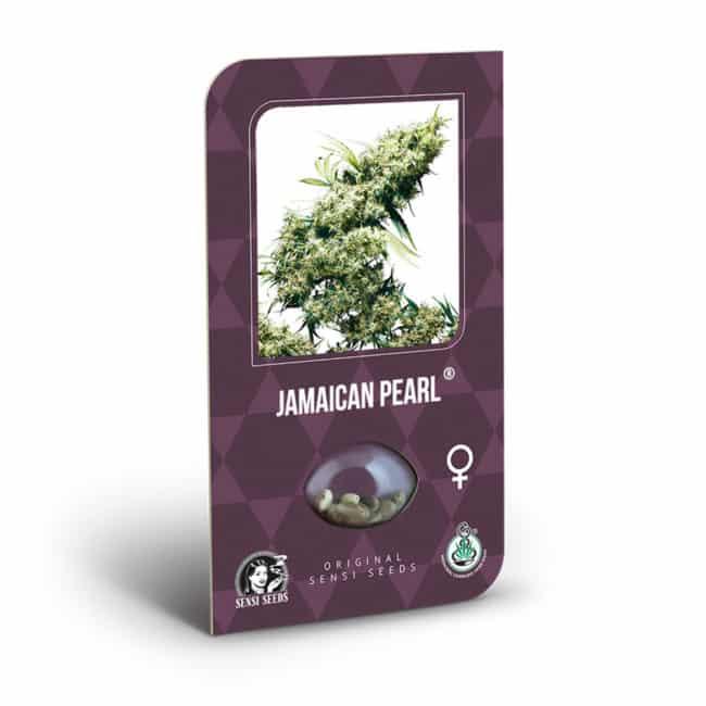Jamaican Pearl Cannabis Seeds