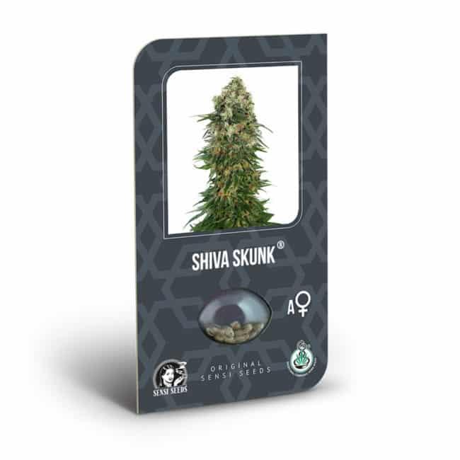 Shiva Skunk Automatic Cannabis Seeds