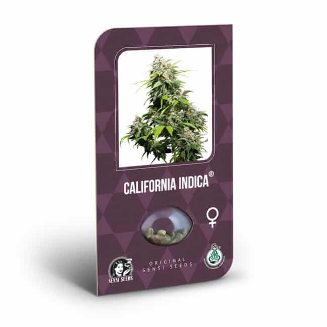 California Indica Cannabis Seeds