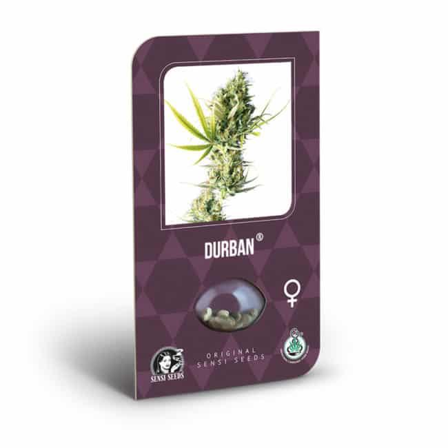 Durban Cannabis Seeds