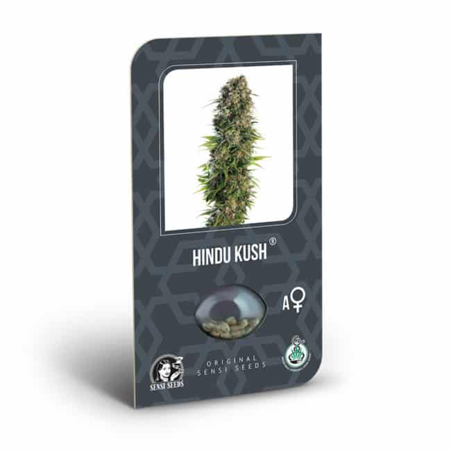Hindu Kush Automatic Cannabis Seeds