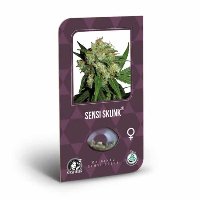 Sensi Skunk Cannabis Seeds