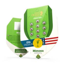Mimosa Automatic Cannabis Seeds