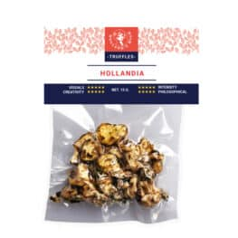 Hollandia Magic Truffles