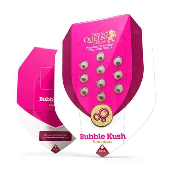 Bubble Kush Feminized Cannabis Seeds