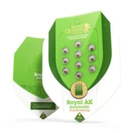 Royal AK Automatic Cannabis Seeds